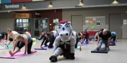 Gee-Gee mascot amongst other students in yoga class.