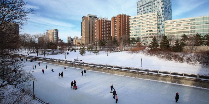 Skaters at rideau canal